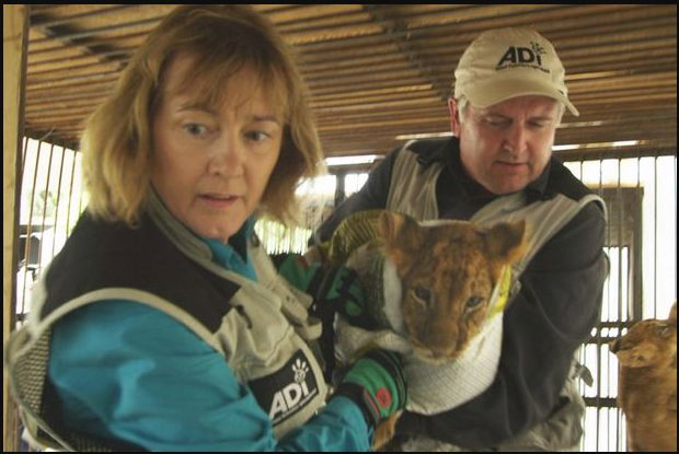 Jan Creamer and Tim Phillips rescuing a tortured cub from a vile circus.