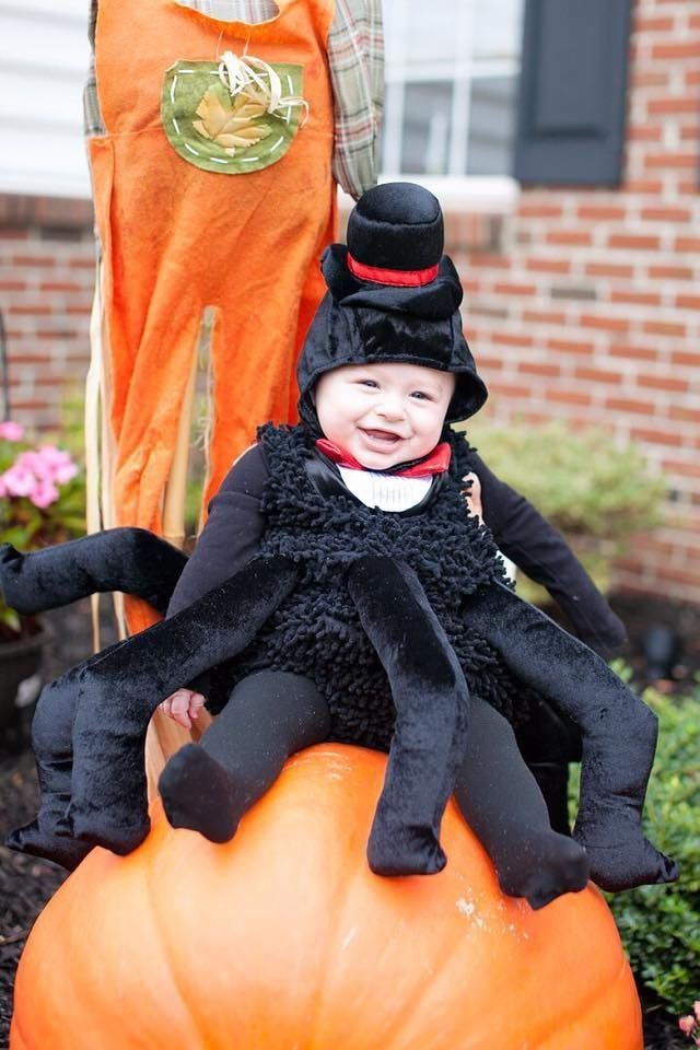 7 Spider  sc 1 st  KOST 103.5 - iHeartRadio & Baby Halloween Costumes That Are Too Adorable! (PICS) | Karen Sharp ...