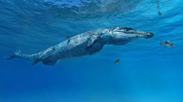 A New Prehistoric Sea Monster Has Been
