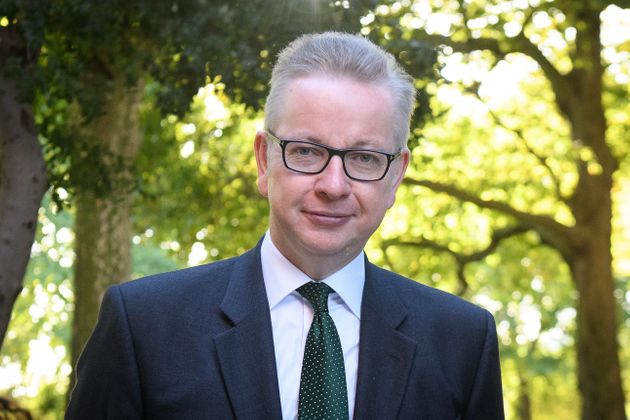 Caroline Lucas says environment secretary Michael Gove is a 'big