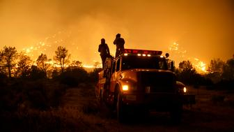 LAKE ISABELLA, CA - JUNE 24: Firefighters from Cal Fire's Sonoma-Lake-Napa Unit pay close attention to the wildfire coming at every direction in Kelso Valley as the wildfire progresses east with the winds, near Lake Isabella, Calif., on June 24, 2016. (Photo by Marcus Yam/Los Angeles Times via Getty Images)