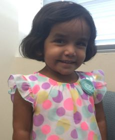 Sherin Mathews' father initially said she vanished after he left her outside earlier this month as