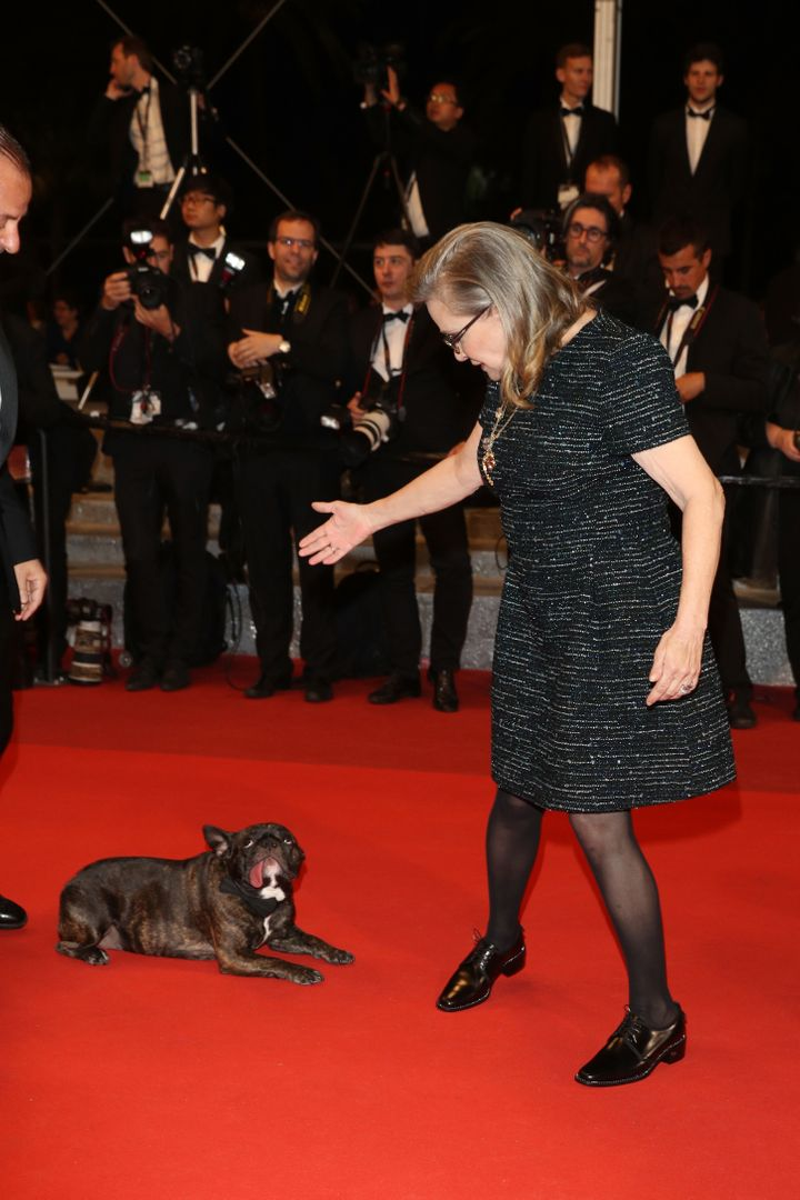 Carrie Fisher and her dog Gary attends 'The Handmaiden (Mademoiselle)' premiere during the 69th annual Cannes Film Festival i