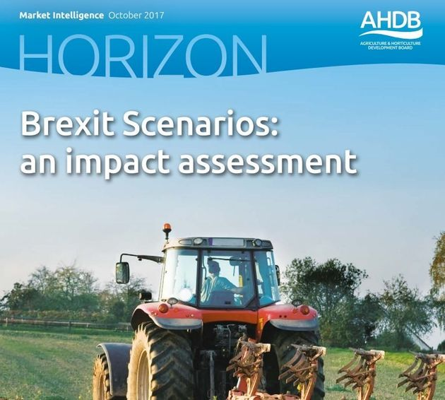 Brexit: Farmers' Incomes Will Be Slashed By Half If 'No Deal' With Brussels, Study