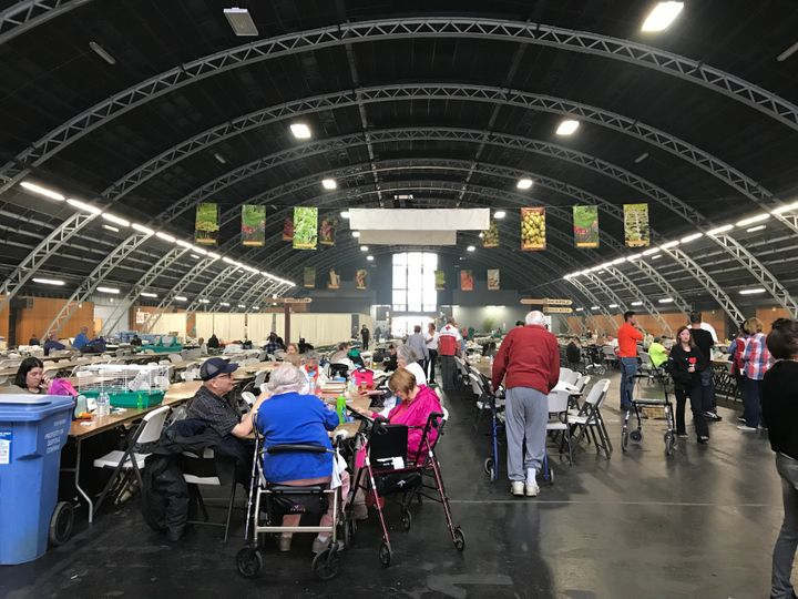 Evacuees wait at a Red Cross shelter at the Sonoma County Fairgrounds in Santa Rosa, California, on Tuesday.