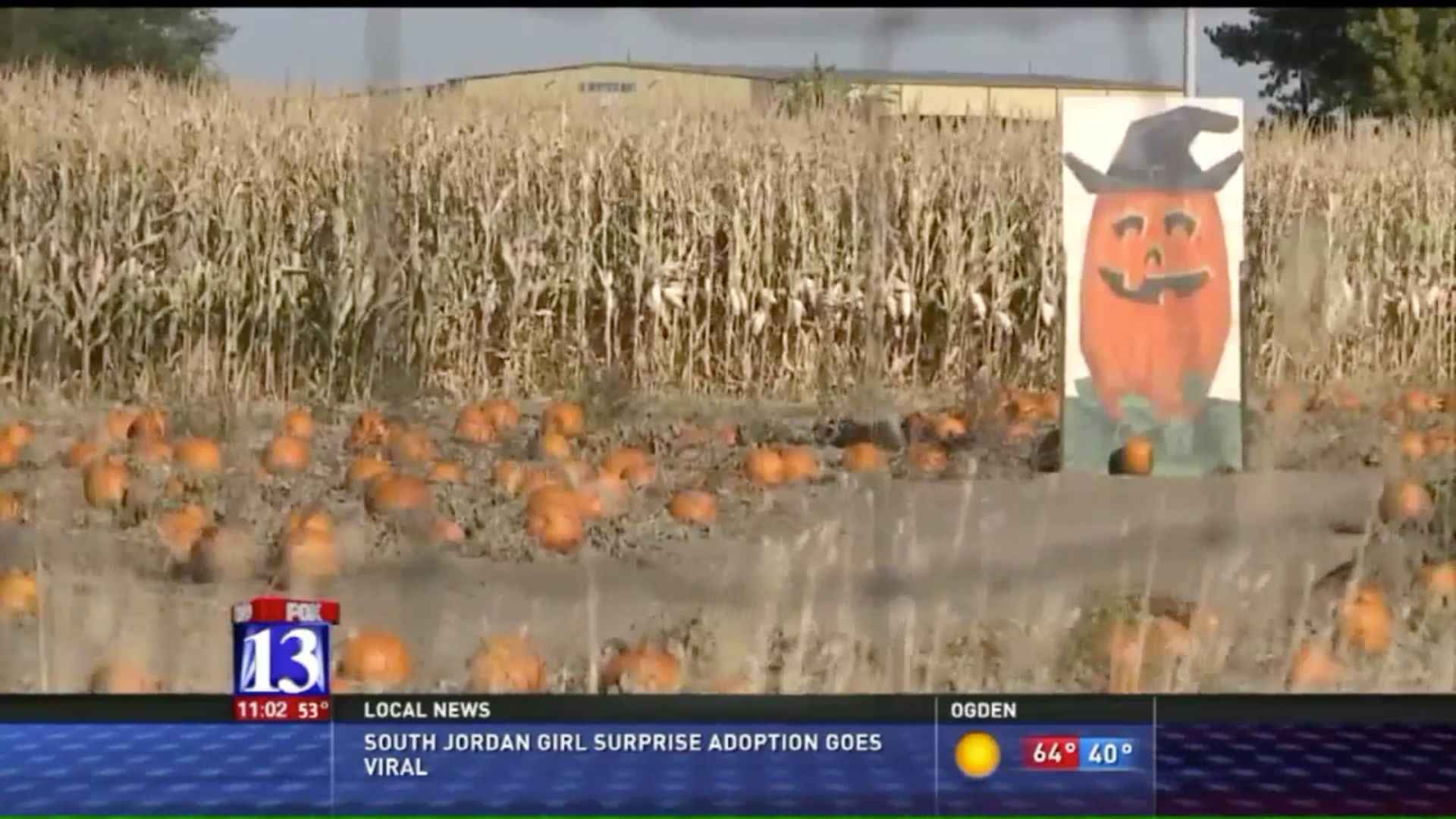 A 3-year-old boy was accidentally left behind at this corn maze in Utah, police said.