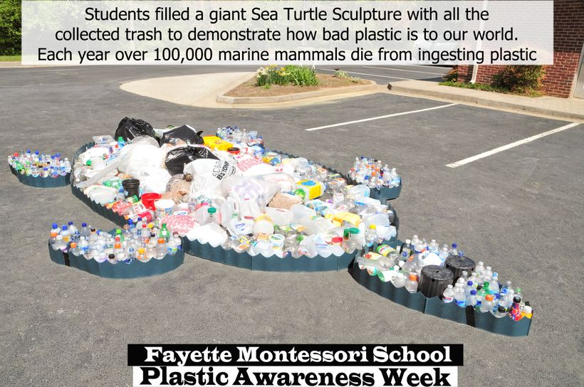 As part of One More Generation's Plastic Awareness Week at Fayette Montessori School, students created a giant sea turtle scu