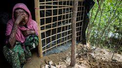 Chilling Report Details Myanmar's Horrific Campaign Against Rohingya