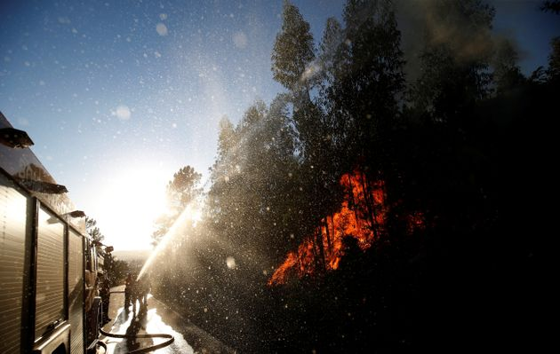Firefighters work to put outthe flames next to the village of Macao, near Castelo Branco, Portugal,...