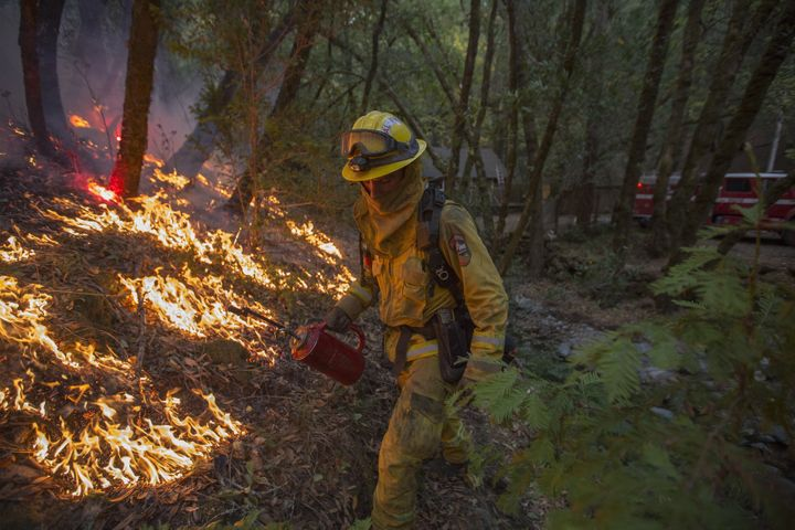 A firefighter uses a drip torch to set a backfire to protect houses in Adobe Canyon during the Nuns Fire on Oct. 15, 2017 near Santa Rosa, California.