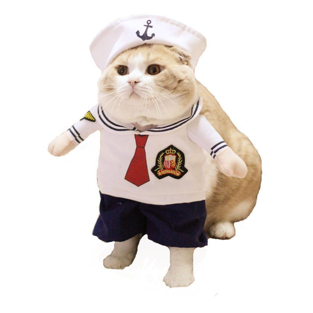 6 Sailor cat costume  sc 1 st  HuffPost & These 25 Cat Halloween Costumes Are Pure Instagram Gold | HuffPost