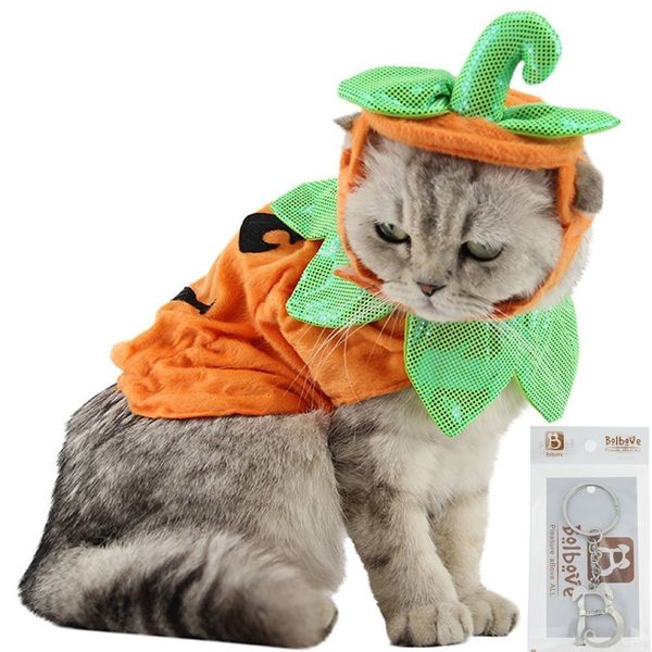 "<a href=""https://www.amazon.com/Bolbove-Pumpkin-Costume-Halloween-Cosplay/dp/B074YDSQMV/?tag=thehuffingtop-20"" target=""_blank"
