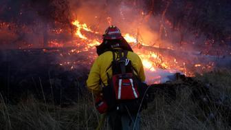 Firefighters battle a wildfire near Santa Rosa, California, U.S., October 14, 2017. REUTERS/Jim Urquhart