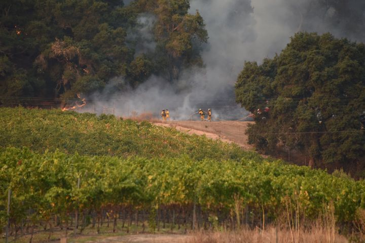Firefighters protect a vineyard in Santa Rosa, in Sonoma County, on Oct. 11. Damage at vineyards has also caused job losses.