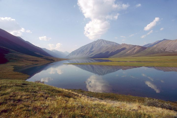 Parts of the Arctic National Wildlife Refuge, in northeastern Alaska, are thought to contain more than 10 billion barrels of