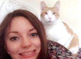 Woman Tracks Down Missing Cat After Uploading Its Photo To Tinder