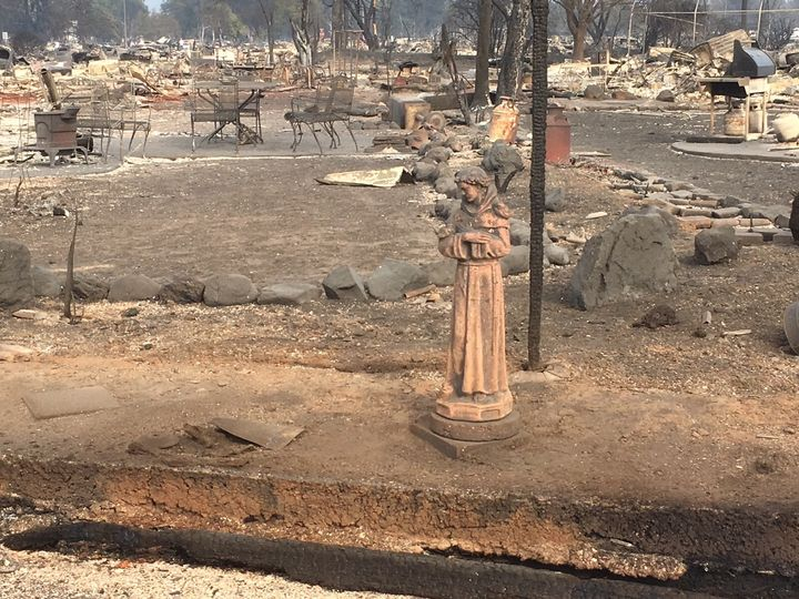 All that remains of Lesley Dordrecht's four-bedroom home in Santa Rosa is the St. Francis statue in the backyard.
