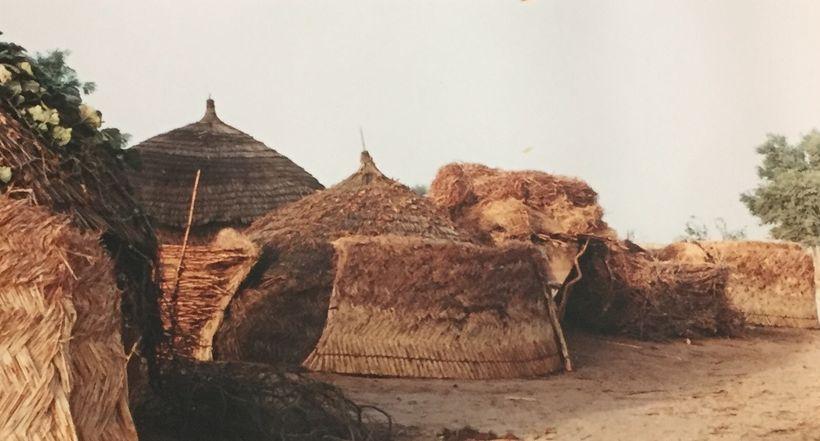 A Rural Village in Western Niger