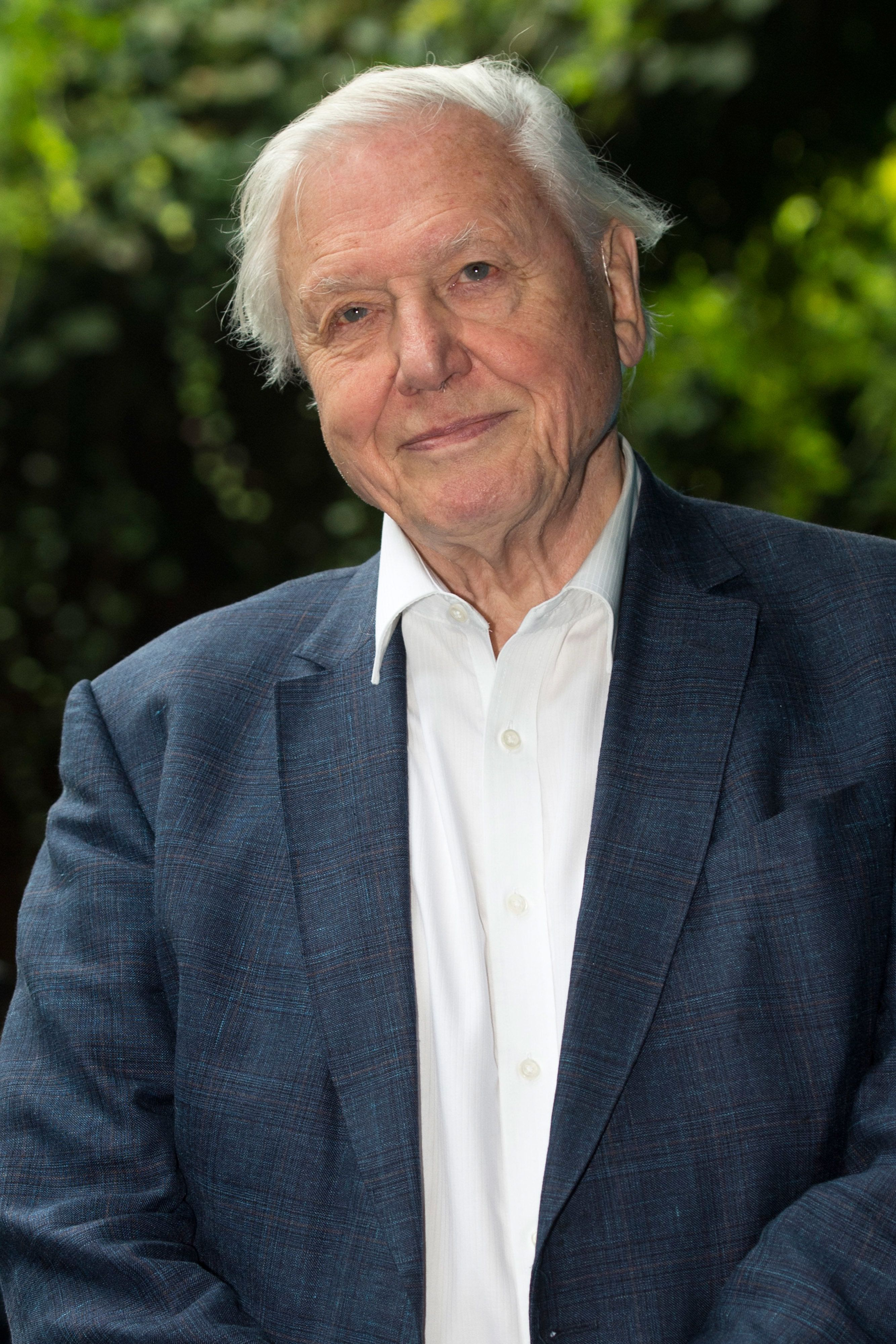 Sir David Attenborough Says Filming Some Scenes For 'Blue Planet II' Was 'A Tragic