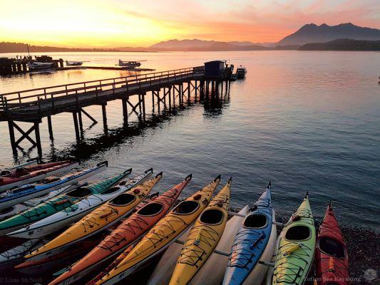 "Photo credit: <a rel=""nofollow"" href=""https://www.tofinoseakayaking.com/"" target=""_blank"">Tofino Sea Kayaking</a>"