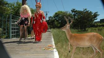 - JULY 4: Ginger Snap and Coco Love attend INDEPENDENCE DAY &THE INVASION OF THE PINES at Cherry Grove and Fire Island Pines on July 4, 2010 in Brookhaven, New York. (Photo by SCOTT MORGAN /Patrick McMullan via Getty Images)