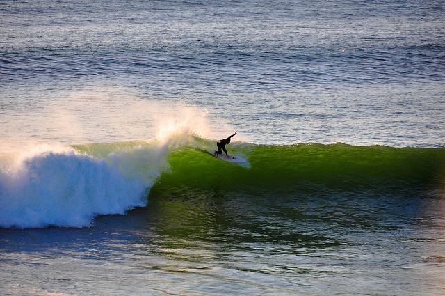 "Montauk surfer    <a rel=""nofollow"" href=""https://www.offmetro.com/"" target=""_blank"">www.offmetro.com</a>"