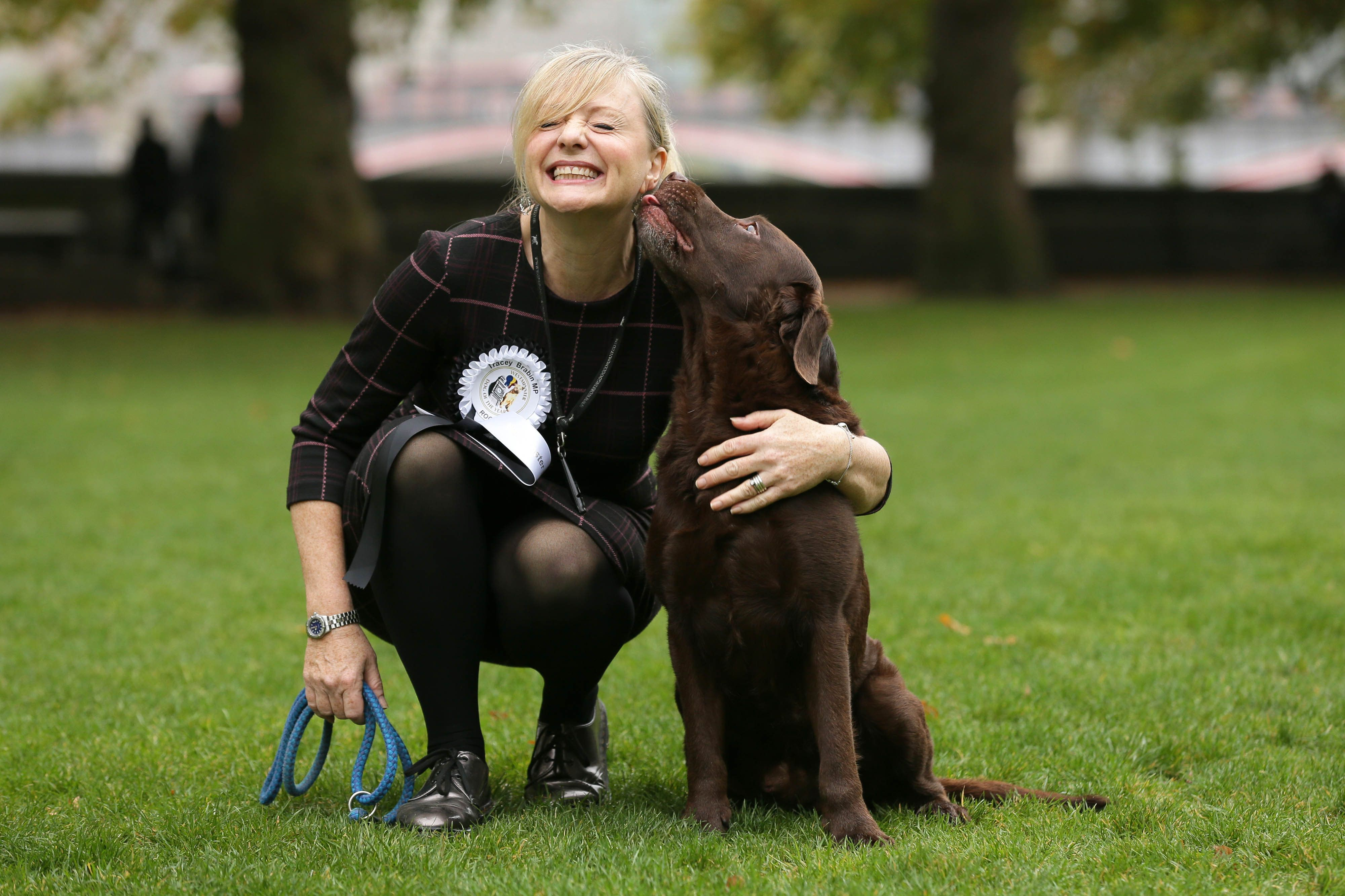 Tracy Brabin's Rocky The Labrador Wins Westminster Dog Of The Year