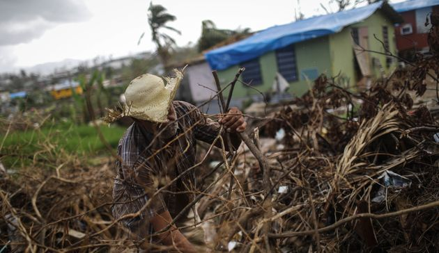 A man clears destroyed tree branches in a neighborhood in San Isidro, Puerto Rico, that's been without...