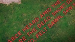 Poppies Used To Spell Out WWI Poem At 7 Different