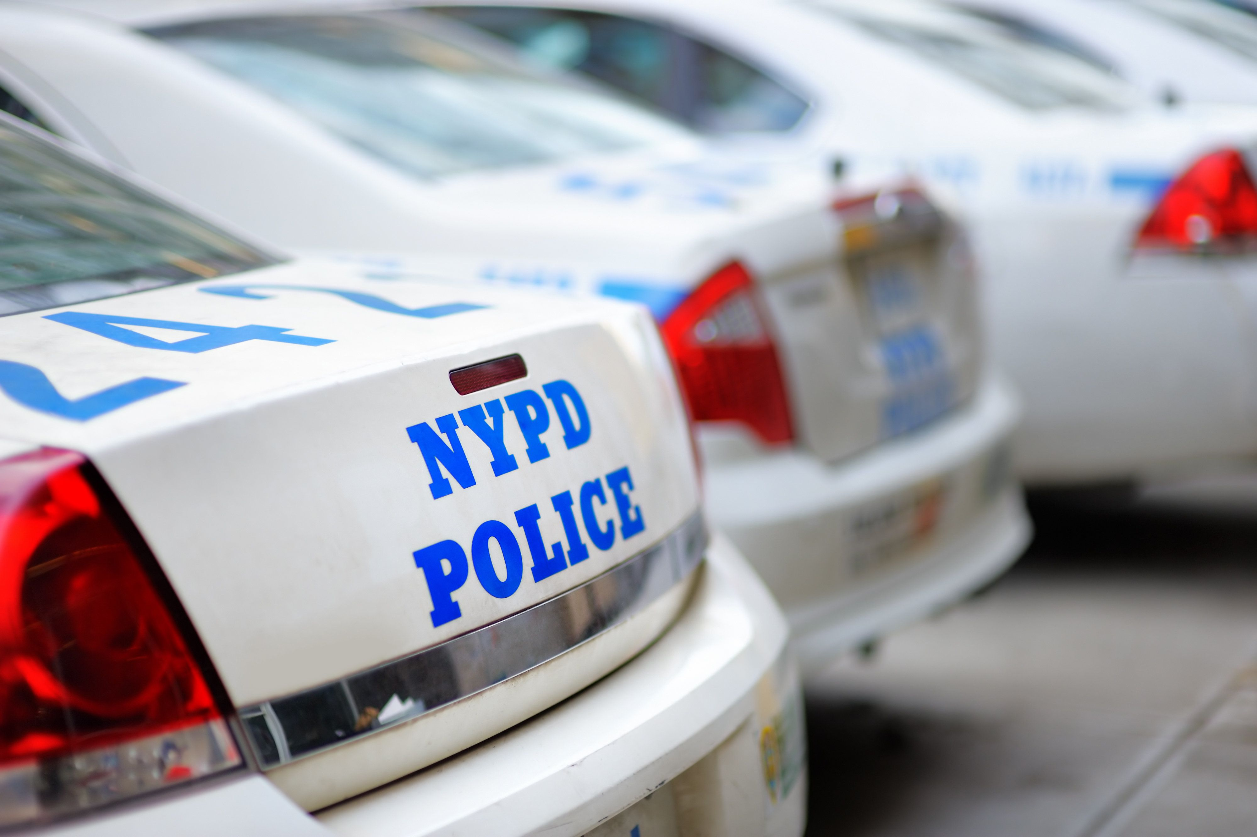 Row of NYPD police cars