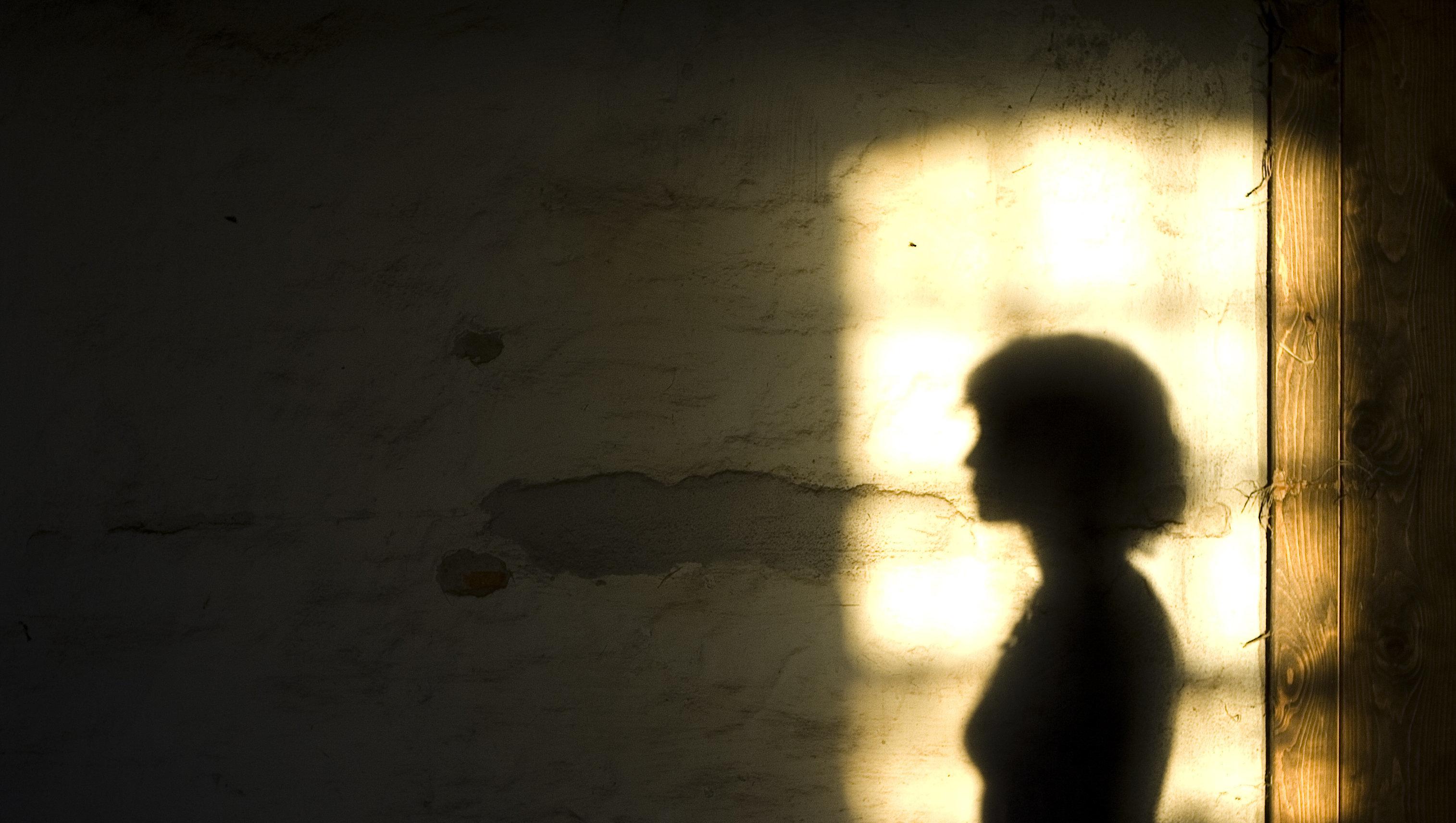 Female shadow on a Danish farm wall.