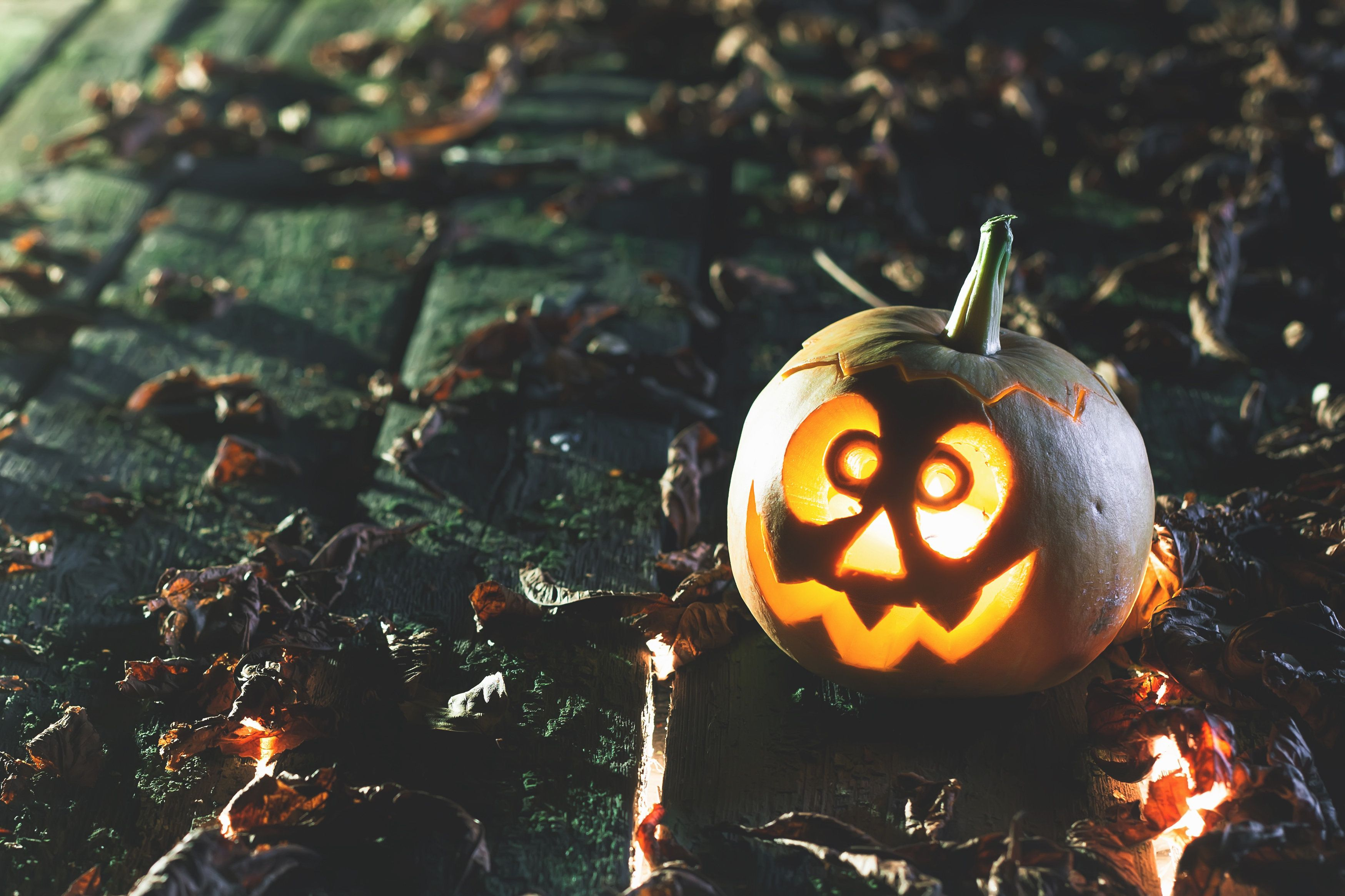 Halloween one little pumpkin at wood background. Carved scary faces of pumpkin. October holiday. Baby pumpcin. Copy space