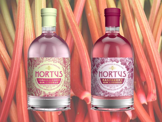 lidl adds rhubarb and raspberry flavoured gin to christmas. Black Bedroom Furniture Sets. Home Design Ideas