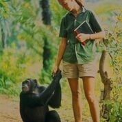 Jane and one of her chimpanzee friends