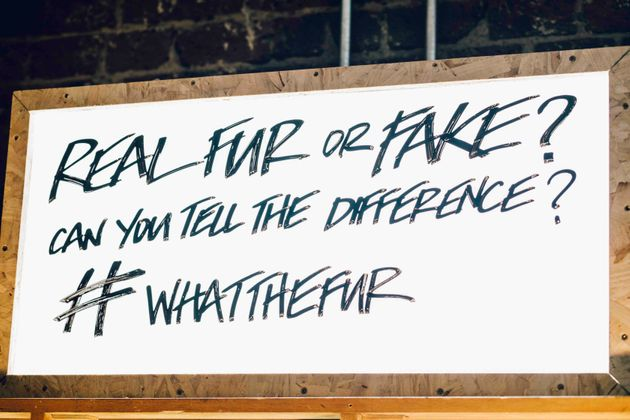 How To Spot The Difference Between Fake And Real