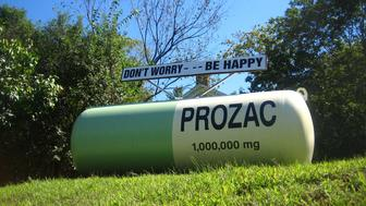 A prozac gas tank art stands on a hill in Red Hook, New York.