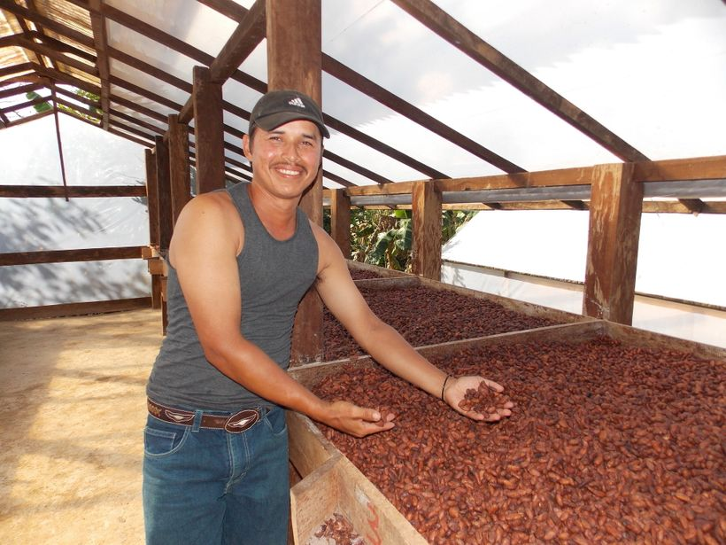 Eliseo Peñas, a member of COODEPROSA cocoa cooperative in Nicaragua, shown here in a cocoa drying area.
