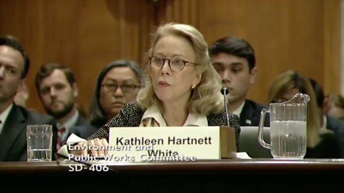 A screenshot from the live-streamed hearing, where Kathleen Hartnett White testified.