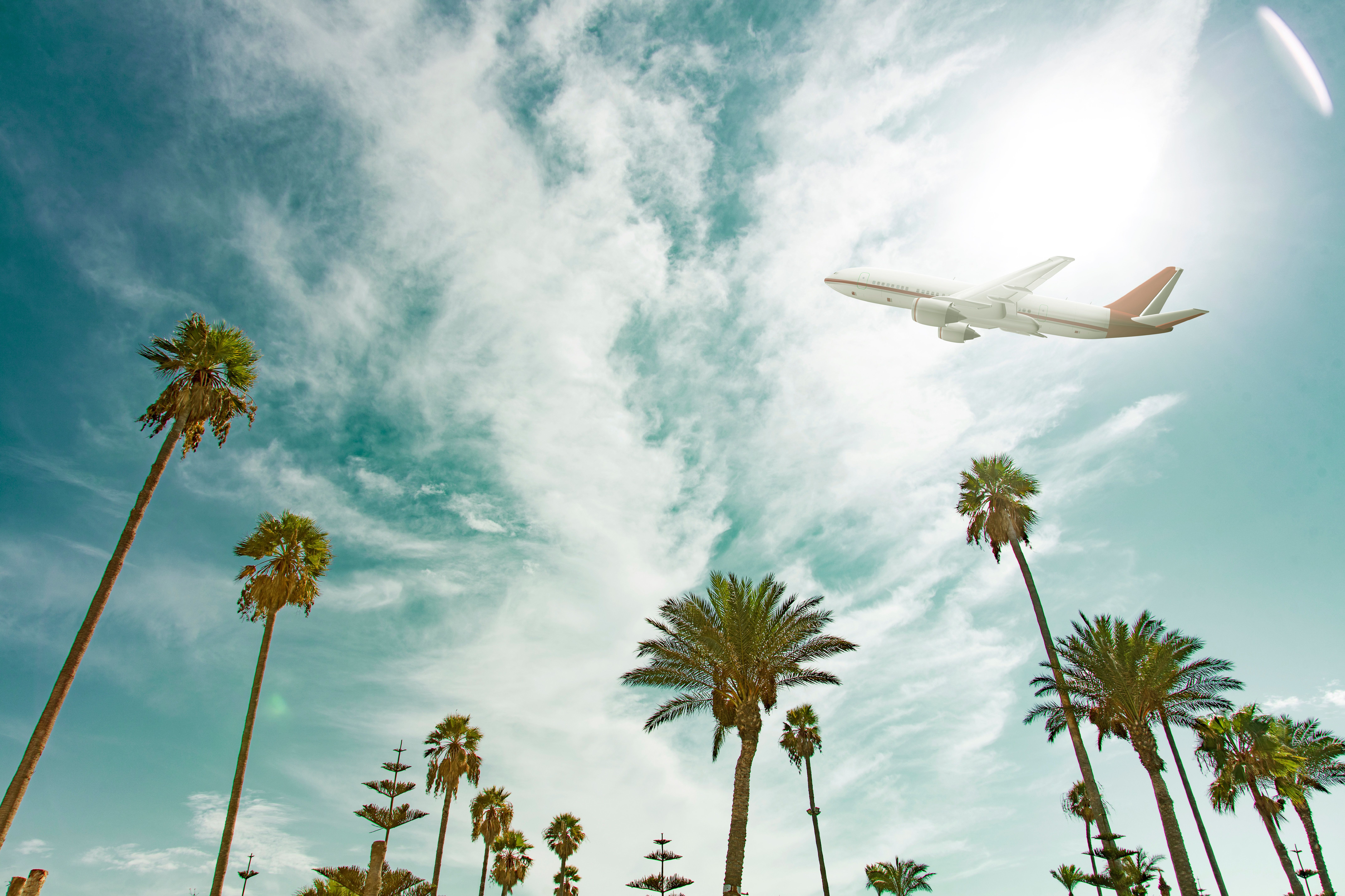 This Is When You Should Book Flights For Your 2018 Holiday To Get The Cheapest