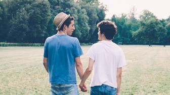 Young Homosexual Couple At The Park Together