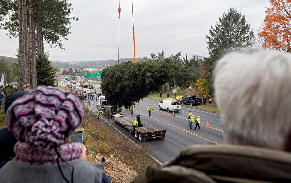 Community members watch as the 75-foot Norway spruce is loaded onto a truck to be taken to Rockefeller Center in New Yor