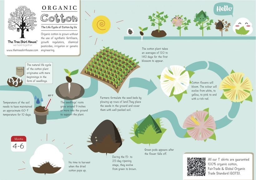 What makes organic cotton organic.