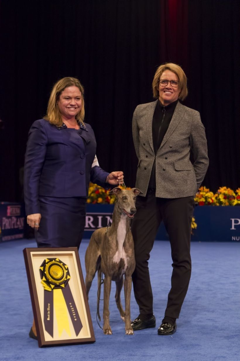 Mary Carillo (right) poses with 2016 National Dog Show Presented by  Purina Best In Show champion Gia, the greyhound and hand