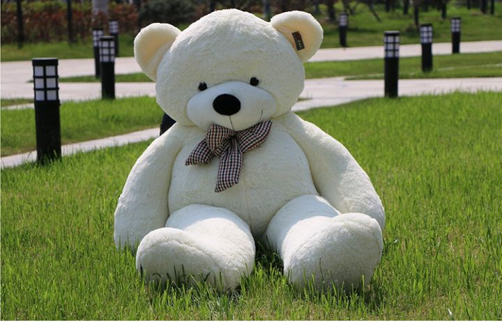 The bear looks pretty normal in the seated position.
