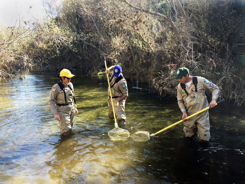 California Conservation Corps - Veterans Fisheries Program