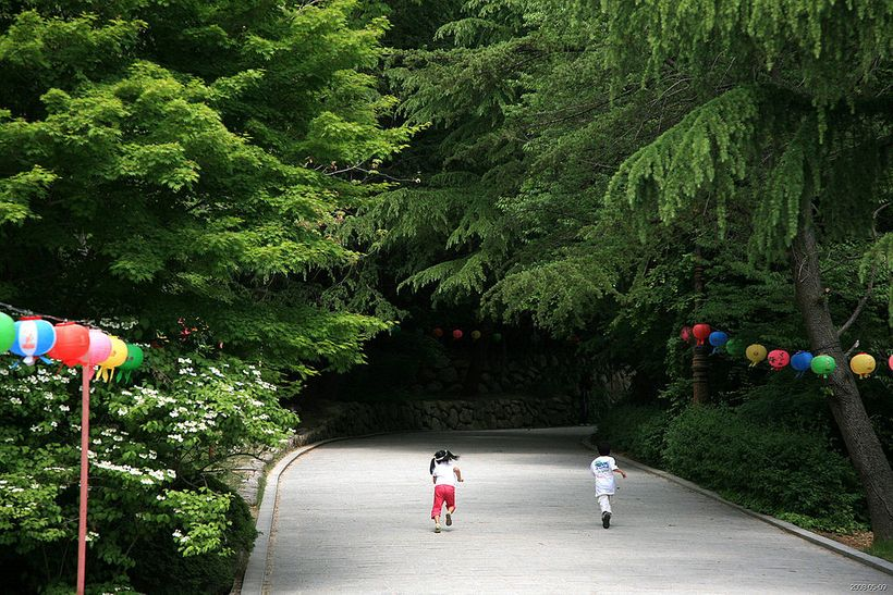 Children on Grounds of a Korean Temple