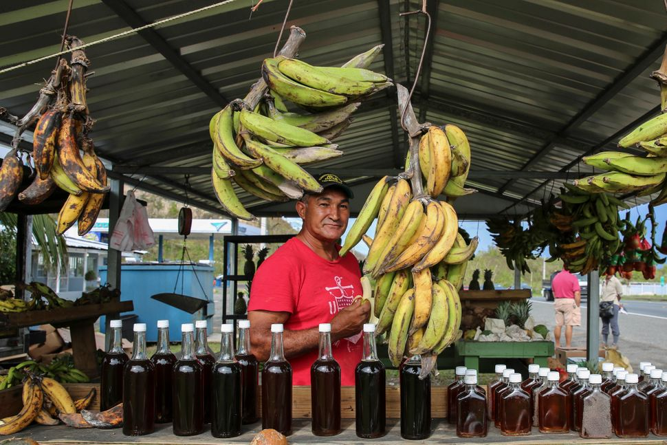 """René """"Papo"""" Cruzlooks out fromhis fruit and vegetable stand in Hatillo, Puerto Rico, on Oct. 1"""