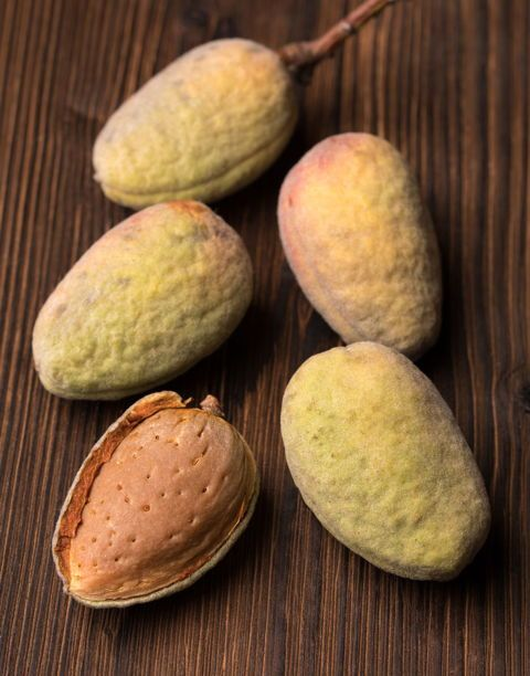 "<em>An almond is very similar to a peach, but with a different subjective moment of ""ripeness.""</em>"