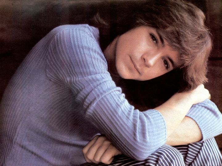 "David Cassidy rose to fame on the TV show ""The Partridge Family."""