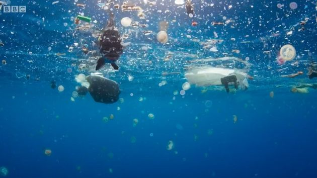 Images from Blue Planet II shows discarded plastic waste floating in the